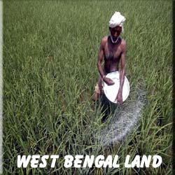 West Bengal Agriculture