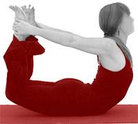 bow dhanurasana  yoga pose