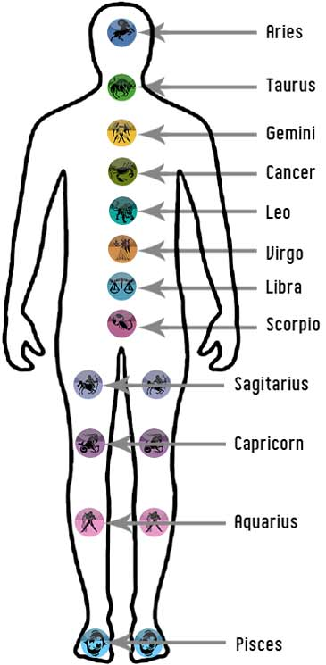 Yoga Asanas Diseases And Asanas Medical Cure By Asanas And Yoga Illness Cure For All Zodiac Signs By Yoga
