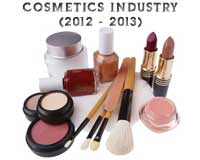 Indian Cosmetics Industry in 2012-2013