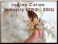 Indian Cotton in 2012-2013
