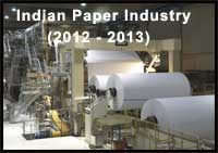 Indian Paper industry in 2012-2013