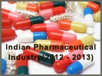 Indian Pharmaceutical industry in 2012-2013