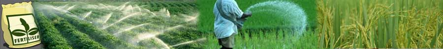 indian fertilizer industry A presentation on the chemical fertilizer industry of india in the recent ten years.