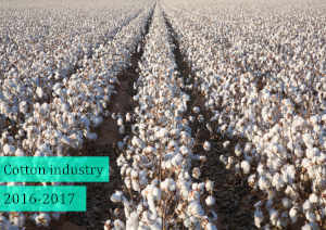 Cotton Textile Industry in India 2016 - 2017
