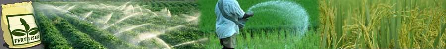 Indian Fertilizer Industry