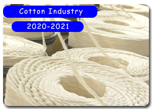 2020-2021 Indian Cotton Industry