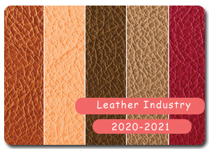2020-2021 Indian Leather Industry