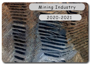 2020-2021 Indian Mining Industry