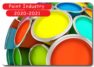 2020-2021 Indian Paint Industry