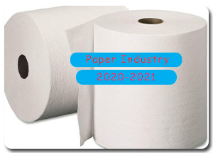 2020-2021 Indian Paper Industry