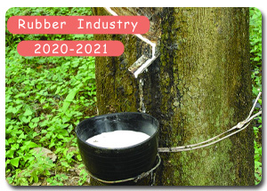 2020-2021 Indian Rubber Industry