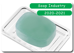 2020-2021 Indian Soap Industry