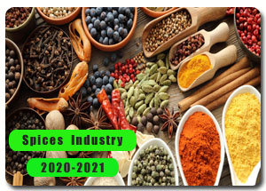 2020-2021 Indian Spices Industry