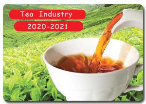 2020-2021 Indian Tea Industry