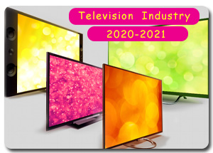 Indian Television Industry in 2020-2021