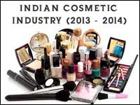 Indian Cosmetics Industry in 2013-2014