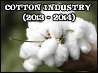 Indian Cotton in 2013-2014