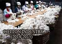 Indian Cotton in 2014-2015