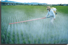 Fertilizer-Pesticides