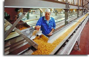 Indian Food Processing Industry in 2011-2012