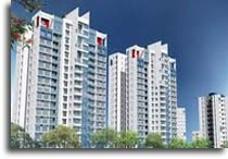 Indian Real Estate in 2011-2012
