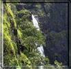 Chikhaldara hills