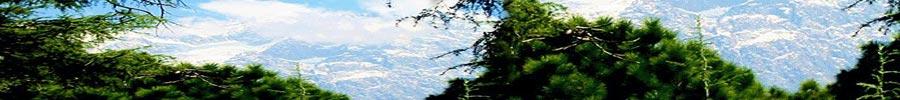 Dharamashala Himachal Pradesh